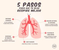 5 pasos para que tu blog respire mejor