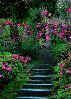 secret garden <3