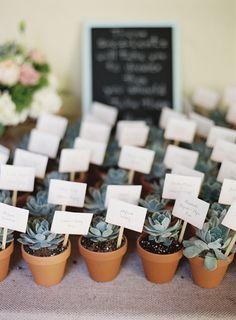 #escort-cards, #succulent Photography: Ozzy Garcia - ozzygarciablog.com Read More: http://www.stylemepretty.com/2013/10/28/miami-wedding-from-ozzy-garcia-photography/