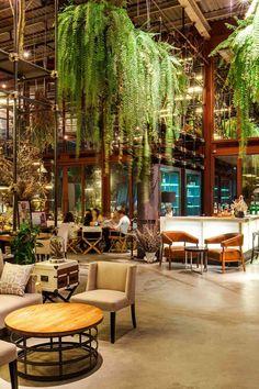 IQOSA, Blog, Vivarium restaurant, Bangkok