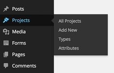 Extending WordPress With Custom Content Types