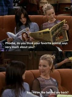 Monica: Phoebe, do you think your favorite animal says very much about you? Phoebe: You mean like behind my back?