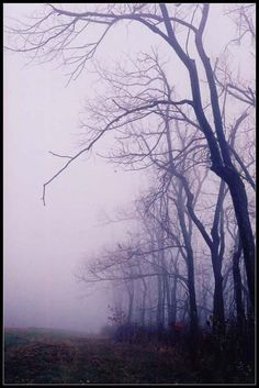 eu gosto de andar sozinha, mãos dadas com a melancolia (mena, arkansas)