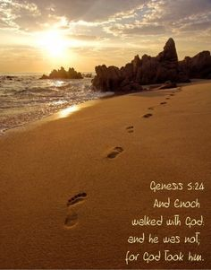 Genesis 5:24 And Enoch walked with God:and he was not; for God took him.