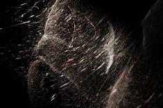 I ragni di Tomás Saraceno che tessono al Planetario sono l'astrofisica del FuoriSalone 2019elledecoritalia