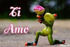 Immagini Immagine Amore Ti amo Manda questa immagine con la rana in ginocchio che porta i fiori alla persona che ami