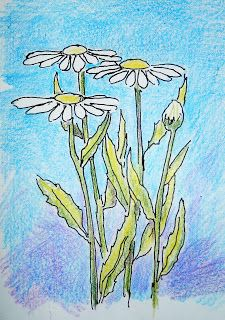 An illustration for the drawing lesson on how to draw daisies. (Drawing Lessons for the Young Artist worksheet.)