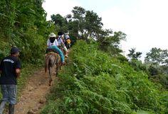 Transporte en ciudad perdida magictourcolombia.com #wetakeyouthere