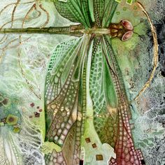 Stephanie Law - watercolor painter, botanical illustrator and artist of fantastical dreamworld imagery. Watercolor And Ink, Watercolor Paintings, Watercolors, Dragonfly Art, Insect Art, Botanical Art, Illustration Art, Dragonfly Illustration, Botanical Illustration