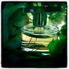 Vert toujours: Perle de Mousse. Green again. #parfum du soir #AnnGérard #fragrance of the evening