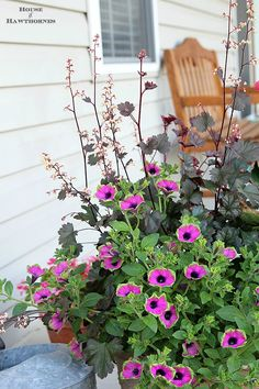 Summer porch planter with Tropical Rose Canna, Pretty Much Picasso Supertunia and Harvest Burgundy Coral Bells