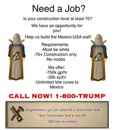 Call 1800 Trump for a professional Runescape career.