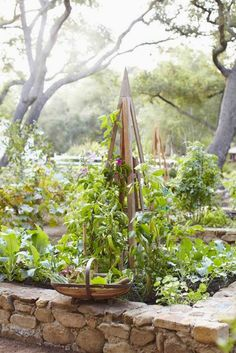 beautiful raised beds made with river rock - one of 8 picks for this week's Friday Favorites