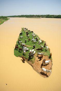 * Rio Níger *  Niamey, Níger.