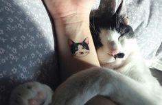 Trend in Zuid-Korea: Met deze tattoo heb je je kat altijd bij je