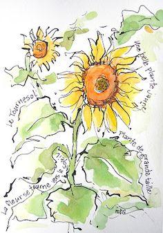 Sketchbook Wandering: City Girl in the Country Garden