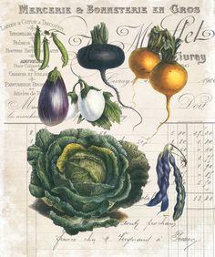 French Vegetable Collage No.4 Botanical Print par BelleBotanica
