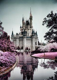 Disney #TeamOwnYourLife