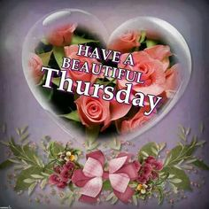 Have a beautiful Thursday quotes quote days of the week thursday thursday quotes happy thursday happy thursday quotes
