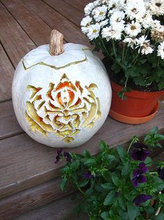 Pumpkins  Carvings