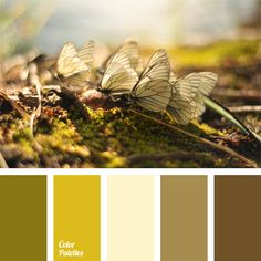 Soft shades of light green and green blend perfectly with a calm shades of brown. Ideally, it is best to use this calm colour palette for a bedroom decor,.
