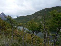 Laguna Larga; El Chaltén, Argentina. Ruta 40