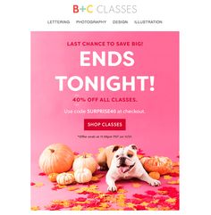 Cyber Week Emails: 9 Designs for Extending Cyber Monday - Email Design Email Design, Web Design, Shop Class, Cyber Monday, Fall Halloween, Black Friday, Ideas, Design Web, Thoughts