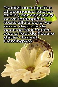 Ernest Hemingway, Motto, Wisdom, Mottos