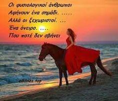 True Words, Good Night, Horses, Nature, Movie Posters, Animals, Life, Greek, Heaven