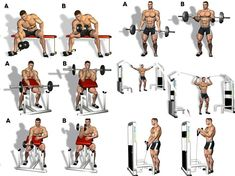 Everybody loves training biceps, right? Training your biceps is a must, as these muscles are one of the most impressive areas when fully developed. Mens Bicep Workout, Big Biceps Workout, Gym Workout Chart, Workout List, Good Arm Workouts, Bicep Workouts For Men, Best Biceps, Fitness Studio Training, Workout Plan For Men