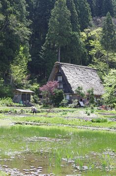 Shirakawa-go, Gifu, Japan 白川郷  My dream house.
