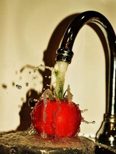 Photography Inspiration Water Shutter Speed 21 Ideas For 2019 Stop Motion Photography, Movement Photography, High Speed Photography, Action Photography, Amazing Photography, Creative Photography, Apples Photography, Macro Photography Tips, Tips