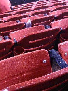 Wet Cardinals seats!