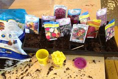 Learn Laugh Grow Child Care: Gardening!