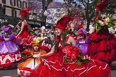 Madeira Island - Flower Festival 2013 , Festa da Flor, Funchal, Madeira Island, Portugal