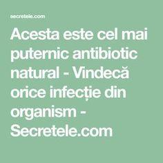 Acesta este cel mai puternic antibiotic natural - Vindecă orice infecție din organism - Secretele.com