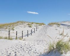 Coastal Wall Art  sand dune & beach path photo by NewLeafPics