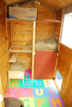 Attention bunny shed people - Rabbits United Forum