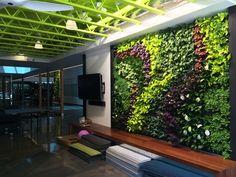 Muro artificial para cochera y patio