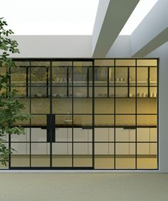 windows. Black steel frame windows. Small grid. French doors.