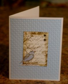 Bird Collage by mayodino - Cards and Paper Crafts at Splitcoaststampers