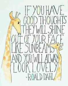 Roald Dahl quote. I was looking for this quote.