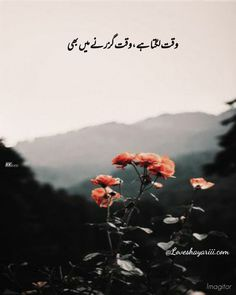 Poetry Quotes In Urdu, Sufi Quotes, Best Urdu Poetry Images, Love Poetry Urdu, Urdu Quotes, Qoutes, Short Quotes, Words Hurt Quotes, Mixed Feelings Quotes