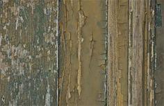 Detail; bare wood, peeling paint; Santa Maria della Salute area; Venice, Italy.  December 2014.