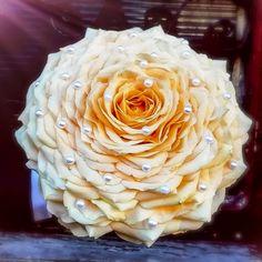 Bride Bouquets, Cabbage, Vegetables, Rose, Desserts, Bridal Bouquets, Tailgate Desserts, Pink, Deserts