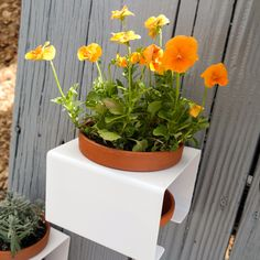 Elevate those herb, succulent and flower pots. Planters for fences, balconies and kitchen walls.