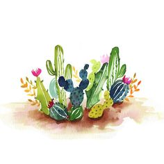 Desert Cactus Watercolor Paint Kit - Let's Make Art Watercolor Kit, Watercolor Cactus, Watercolour Tutorials, Watercolour Painting, Abstract Watercolor, Watercolors, Cactus Drawing, Cactus Painting, Cactus Art