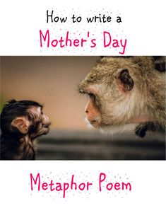 This Mother's Day poetry resource enables your pupils to write a highly personalized (and often humorous) mother's day poem using metaphors. It consists of a complete lesson plan and an accompanying PPT. Metaphor Poems, Mothers Day Poems, Writing Poetry, Teaching Resources, Classroom, Author, Teacher, How To Plan, This Or That Questions