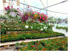 Garden store in Akaa.