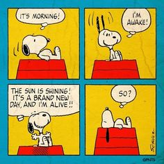 Good morning to you too snoopy